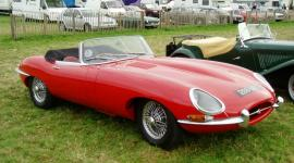 Car Consultant at Goodwood Revival Classic Car event